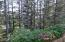 96 NW 33rd Pl, C, Newport, OR 97365 - Forest and Ocean Peek
