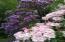 122 Reeves Circle, Yachats, OR 97498 - mature plantings
