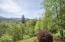 415 N Maple Dr, Otis, OR 97368 - View #2 (1280x850)