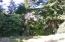 3827 Yaquina Bay Rd, Newport, OR 97365 - rhodies