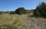 1602 NW Parker Ave, Waldport, OR 97394 - Lot