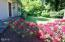 1070 NW Sunset Dr, Toledo, OR 97391 - Rhododendrons