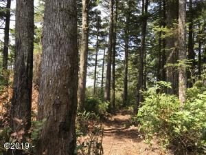 TL 900 NW Seal Rock St., Seal Rock, OR 97376 - lot 2019