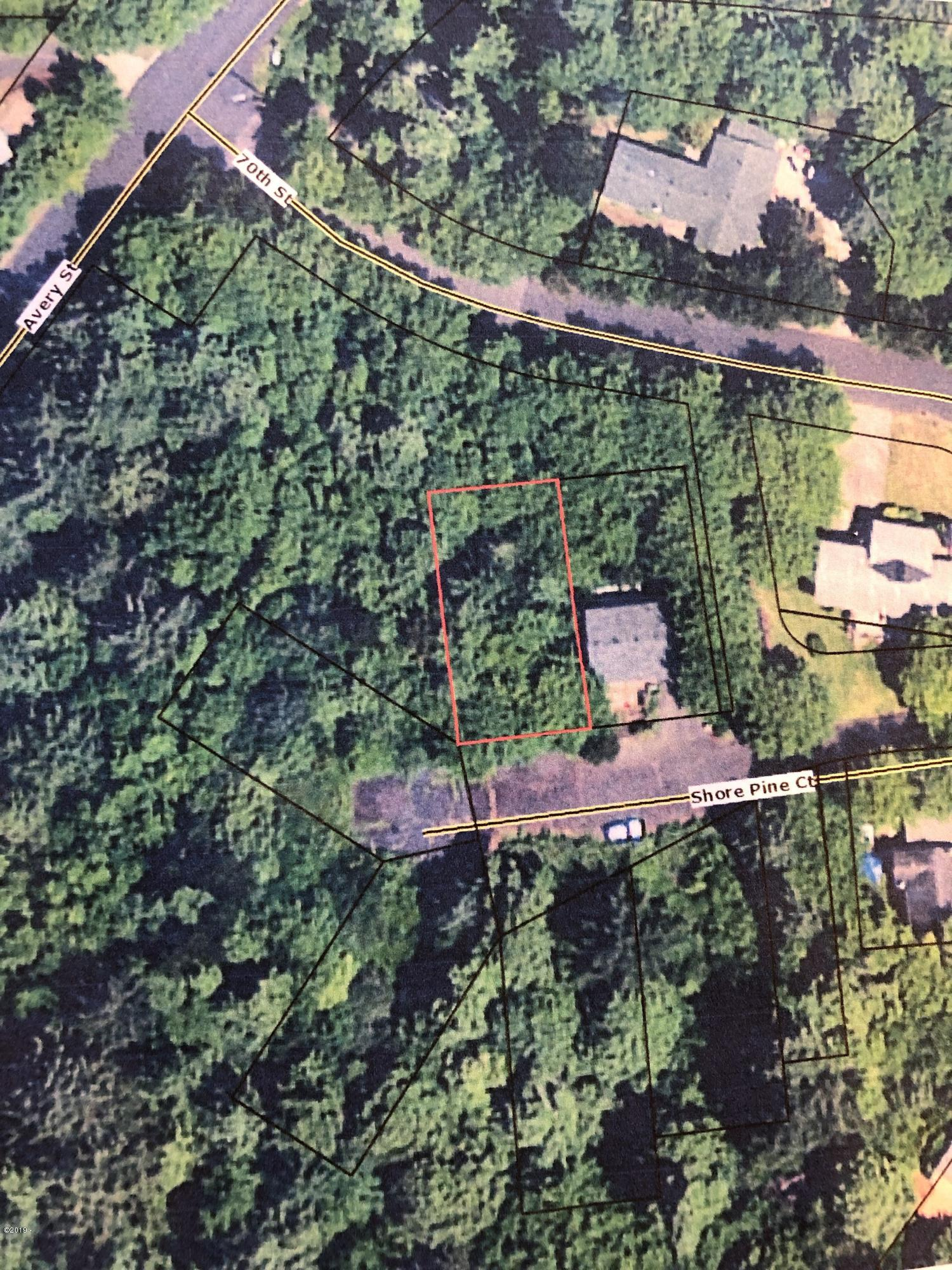 TL 1800 NE Shore Pine Ct, Newport, OR 97365 - Aerial of the Lot