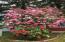 155 N Westview Cir, Otis, OR 97368 - Spring Rhododendron