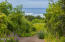 430 Whale Point Dr, Neskowin, OR 97149 - driveway