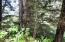 T/L 1201 Valley View Dr, Neskowin, OR 97149 - Lot