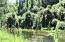 19176 E Alsea Hwy, Tidewater, OR 97390 - River!