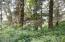 VL Sandlake Rd, Cloverdale, OR 97112 - Wooded Setting 2