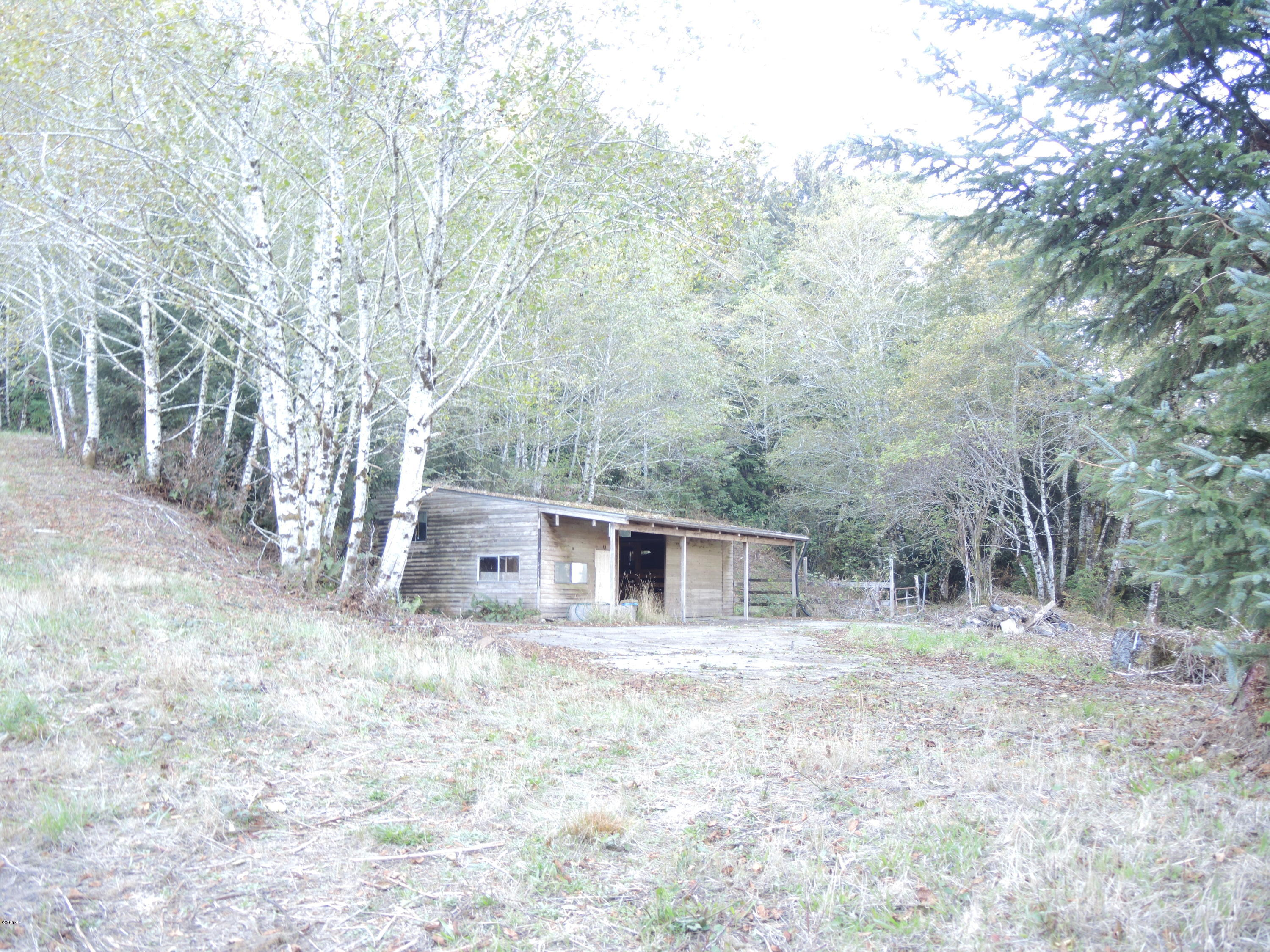 1200 S Immonen Road, Lincoln City, OR 97367 - View of building site