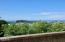 901 NE 7th Dr, Newport, OR 97365 - Deck View