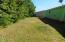 1345 SW Forest Pkwy, Waldport, OR 97394 - 431-502599 Back yard