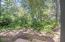 1270 Meadow Lane, Depoe Bay, OR 97341 - Backyard