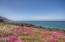 1270 Meadow Lane, Depoe Bay, OR 97341 - Ocean front