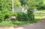 1079 Crystal Creek Lp, Toledo, OR 97391 - Driveway