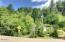 1079 Crystal Creek Lp, Toledo, OR 97391 - Cross Street View