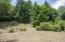 421 E Burnt Limb Lane, Tidewater, OR 97390 - Front Yard - View 1 (1280x850)