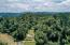 429 Hidden Valley Rd, Toledo, OR 97391-9522 - DRONE VIEW OF TREES ON PROPERTY