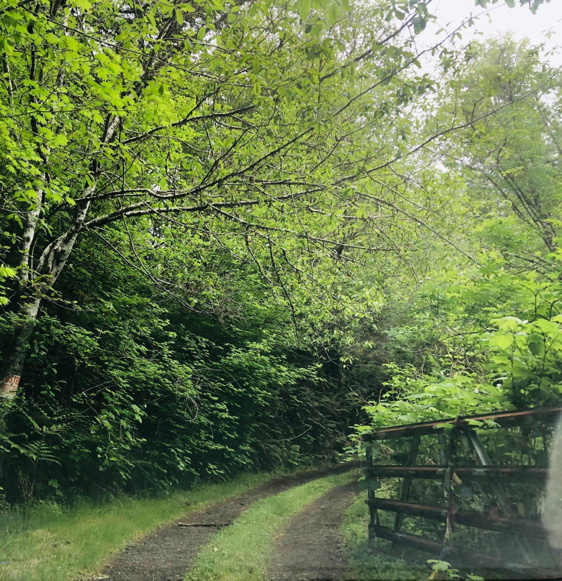 9343 S Schooner Creek Rd, Otis, OR 97368 - Driveway
