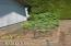 204 Bain Dr E, Tidewater, OR 97390 - Garden space