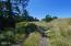LOT 1 NW Lotus Lake Dr, Waldport, OR 97394 - Approach to site