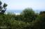 1437 NW Oceanview Dr, Newport, OR 97365 - Backyard View