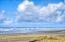 6410 SW Arbor Dr, South Beach, OR 97366 - batch_26 - SS Beach with Birds
