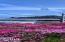 55 SW Gull Station, Depoe Bay, OR 97341 - Flowers in Bloom