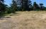 LOT 1 NW Lotus Lake Dr, Waldport, OR 97394 - Level Area