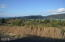 TL 1402 Dana Lane, Pacific City, OR 97135 - Lot from Street