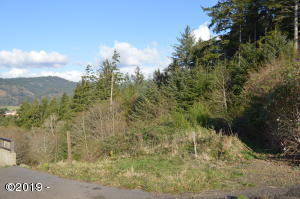 TL 1400 Dana Lane, Pacific City, OR 97135 - Lot from Street