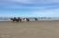 5805 SW Arbor Dr, South Beach, OR 97366 - horses on beach
