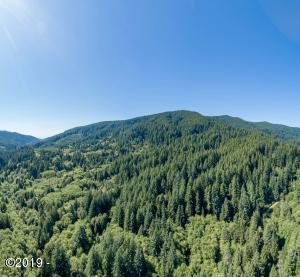 TL 400 Big Creek Road, Yachats, OR 97498 - 5.42 ACRES
