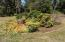 12801 SE Chittum Dr., South Beach, OR 97366 - Island in Circular Driveway