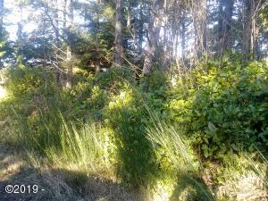 TL4800 Wyoming St, Yachats, OR 97498 - Front of Lot