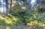 TL4800 Wyoming St, Yachats, OR 97498 - Interior of Lot