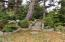 286 NE Evergreen Ln, Yachats, OR 97498 - Mature Landscaping