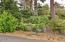 286 NE Evergreen Ln, Yachats, OR 97498 - Landscaping