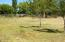 21001 SW Young Ave, Bend, OR 97701 - Pasture