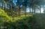 5623 SW Neal Ave, Waldport, OR 97394 - Ocean View Lots