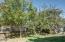 707 NE 7th St, Newport, OR 97365 - Fruit trees