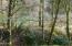 4624 Logsden Rd, Siletz, OR 97380 - 4624 River frontage