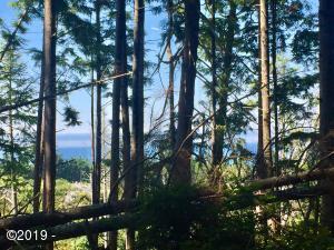 520 Ocean View Ln, Gleneden Beach, OR 97388 - Ocean View