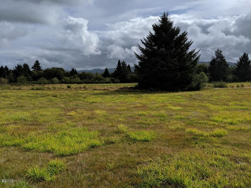 TL# 2700 Riverview Meadows Ln, Nehalem, OR 97131 - Subject Property