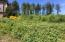 LOT16 Spring Ave, Depoe Bay, OR 97341 - Up street two lots to house