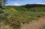 LOT16 Spring Ave, Depoe Bay, OR 97341 - East view