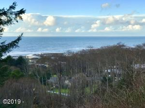 TL 2000 Hanley Dr, Yachats, OR 97498 - West View in January