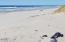 1901 NW Bayshore Dr, Waldport, OR 97394 - Ocean & Beach