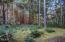 1483 SW Tintinnabulary Pl, Depoe Bay, OR 97341 - Backyard - View 2 (1280x850)