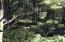TL 3900 Tillicum St, Depoe Bay, OR 97341 - IMG_9608